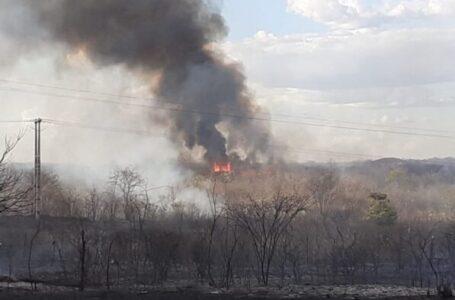 Incêndio de grandes proporções devasta vegetação em área rural de Piancó
